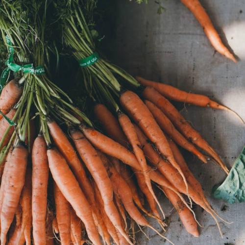 Sofort-Tipps für mehr Nachhaltigkeit im Alltag: CO2 einsparen, Vegan oder vegetarisch essen und Bio Lebensmittel, Obst, Gemüse regional einkaufen. Hier lesen, welche Maßnahmen du sofort zu Hause umsetzen kannst!